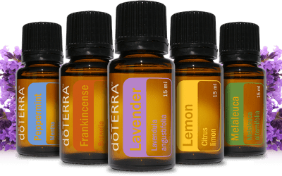 7 Essential Oils keeping my Immune system healthy!